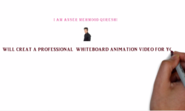 Professional Whiteboard Animation Video