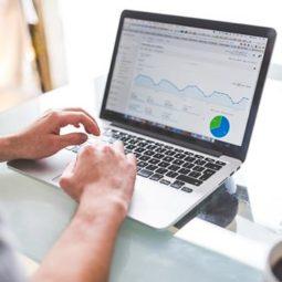 Business & Online Marketing